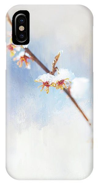 Frosted Witch Hazel Blossoms  IPhone Case