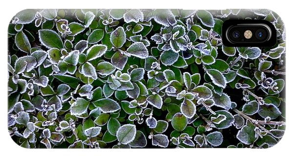 Frosty Hedgerow IPhone Case