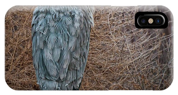 IPhone Case featuring the photograph Frosty Heron by Britt Runyon