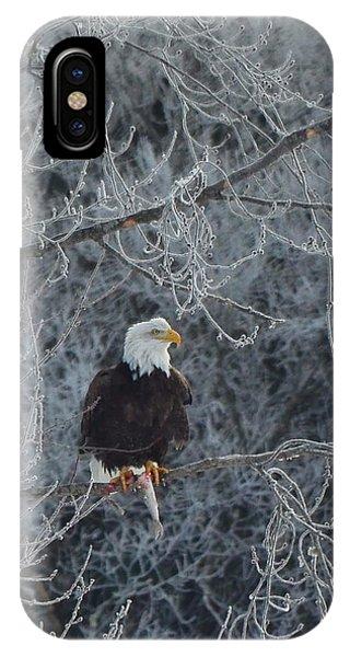 Frosty Morning Eagle IPhone Case