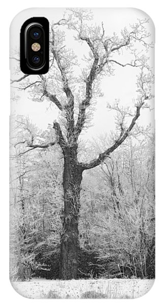 IPhone Case featuring the photograph Frosty Old Tree by Ken Barrett