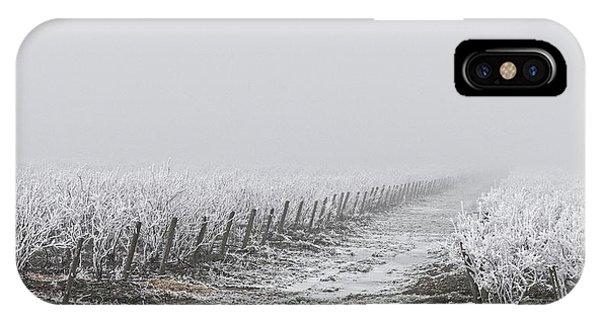 iPhone Case - Frozen Blueberry Mist by Bill Linn