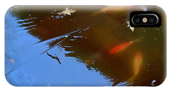 IPhone Case featuring the photograph Frozen Carp by Richard Ricci