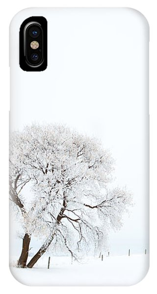 Frozen Morning IPhone Case