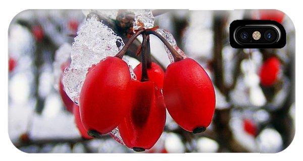 Frozen Red Berries IPhone Case