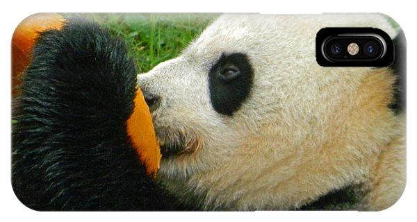 Frozen Treat For Mei Xiang The Giant Panda IPhone Case