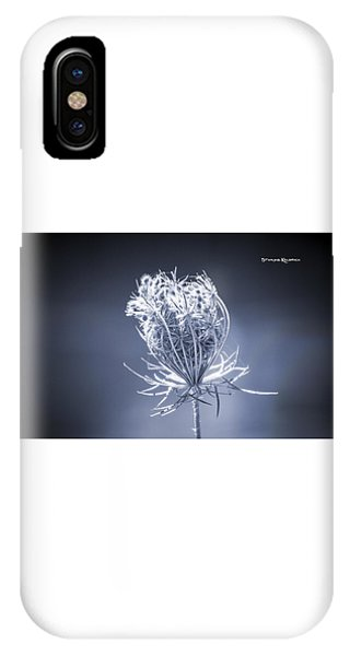 IPhone Case featuring the photograph Frozen Wildflower by Stwayne Keubrick