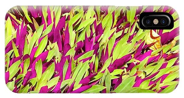Fuchsia And Green -- Aloha Ground Cover IPhone Case
