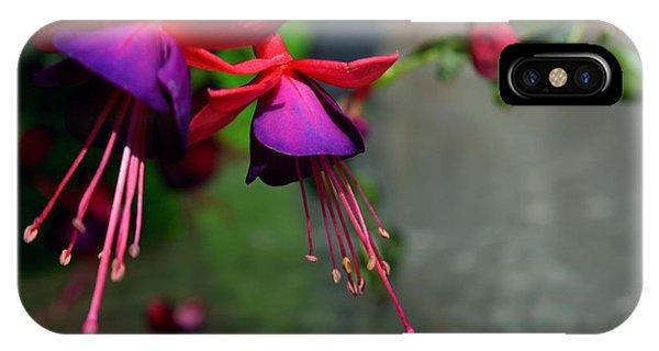 Fuchsia Original Photo IPhone Case