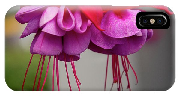 Fuchsia  IPhone Case