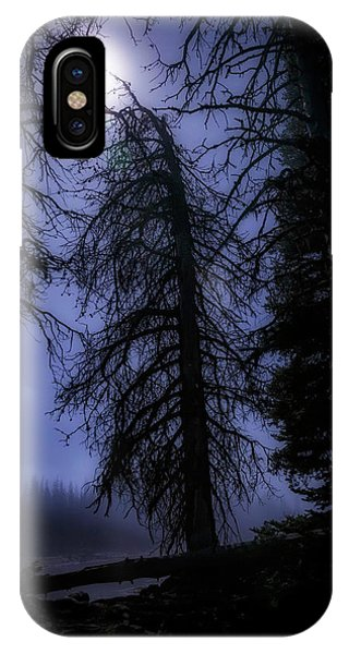 Full Moon In The Woods IPhone Case