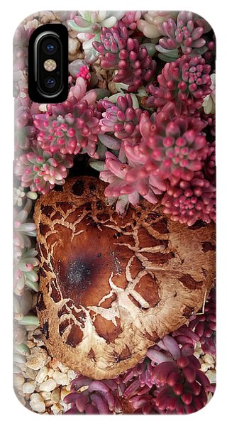 Fungus And Succulents IPhone Case