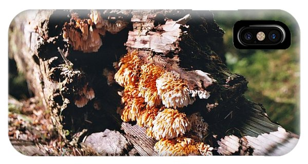 Fungus Is Beautiful IPhone Case