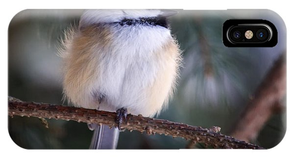Fuzzy Chickadee IPhone Case