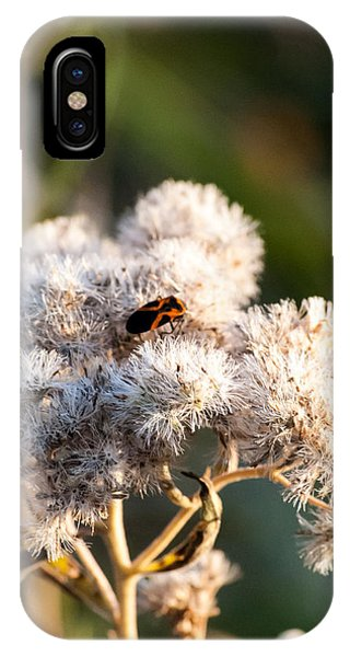 Fuzzy With Bug IPhone Case