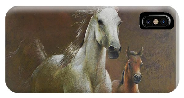 Gallop In The Eyelash Of The Morning IPhone Case