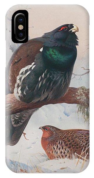 Mallard iPhone Case - Game Birds And Wild-fowl  by Archibald Thorburn