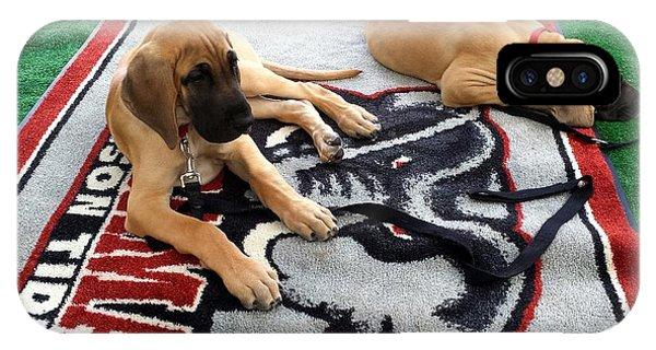 Gameday Great Dane Puppies IPhone Case