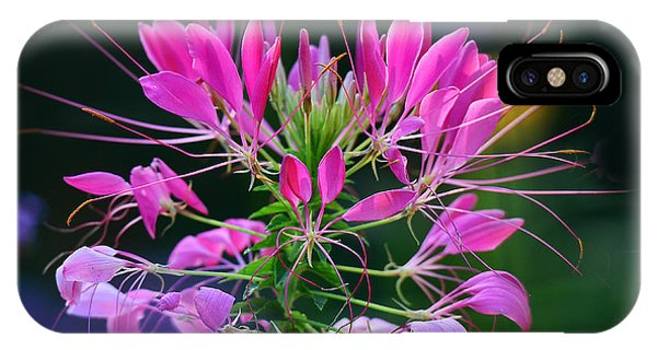Garden Magic IPhone Case