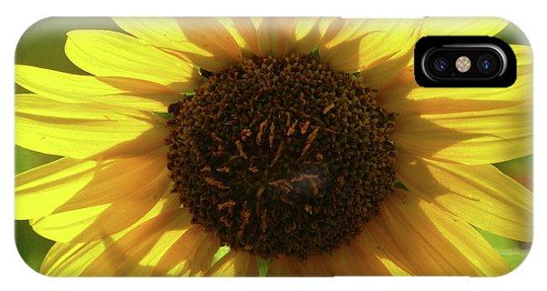 Garden Sunshine IPhone Case
