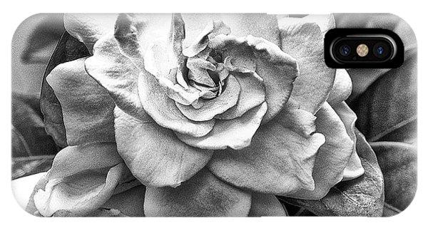 Gardenia Black And White IPhone Case