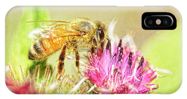 Honeybee iPhone X Case - Gathering Pollen by Susan Capuano