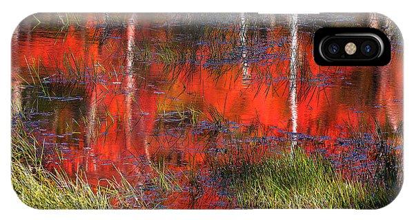 Gatineau Marsh Fall Colors IPhone Case