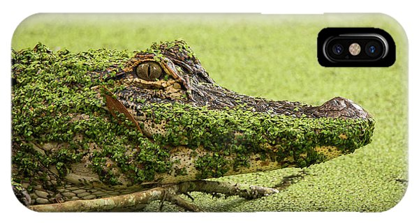 Gator Camo IPhone Case