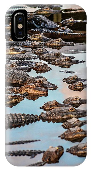 Gator Pack IPhone Case