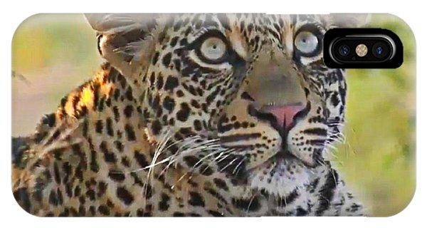 Gazing Leopard IPhone Case