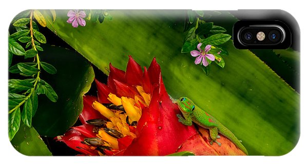 Gecko Aloha All Proceeds Go To Hospice Of The Calumet Area IPhone Case