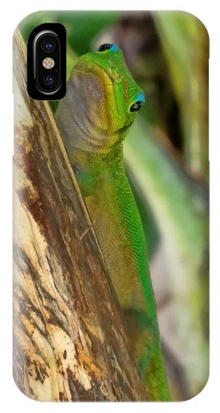 Gecko Up Close IPhone Case
