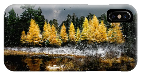 IPhone Case featuring the photograph Geese Over Tamarack by Wayne King
