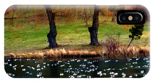 Geese Weeping Willows IPhone Case
