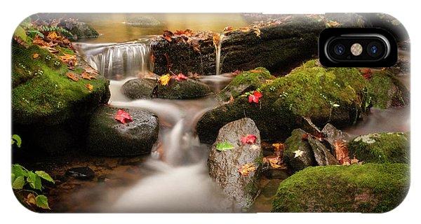 Gentle Cascades Of Autumn  IPhone Case
