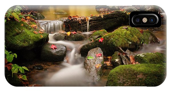 Gentle Cascades Of Autumn  IPhone Case