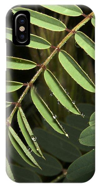 Gentle Morning Dew IPhone Case