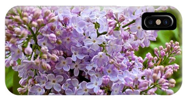 Gentle Purples IPhone Case