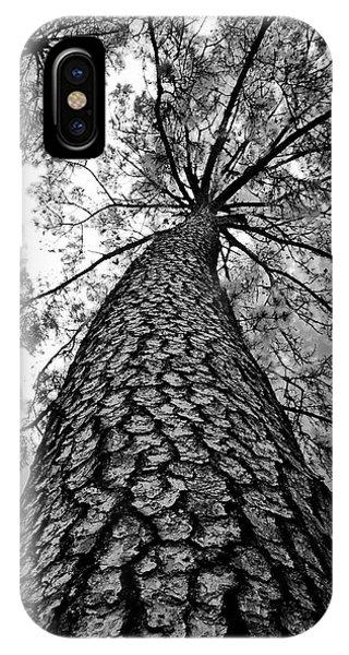 Georgia Pine IPhone Case