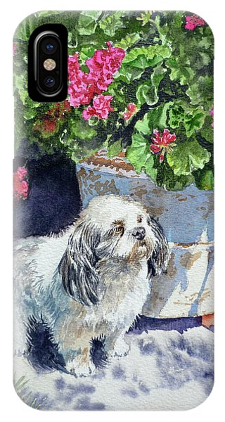 Watercolor Pet Portraits iPhone Case - Georgie by Irina Sztukowski