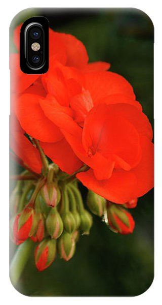 IPhone Case featuring the photograph Geranium  by Cristina Stefan