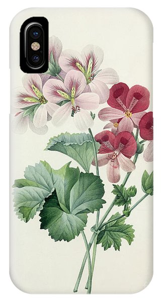 Botanical iPhone Case - Geranium Variety by Pierre Joseph Redoute