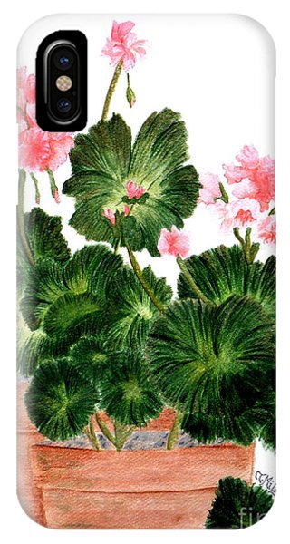 Geraniums In Clay Pots IPhone Case