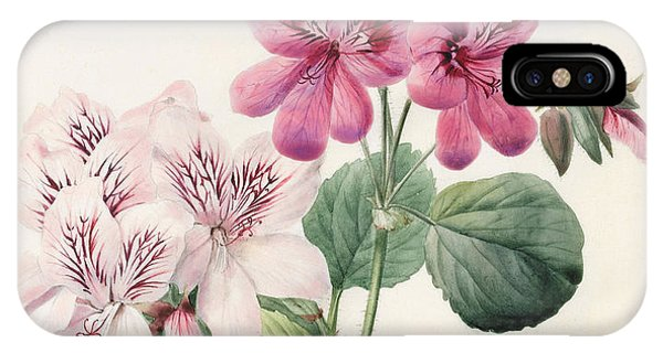 Flora iPhone Case - Geraniums by Louise D'Orleans