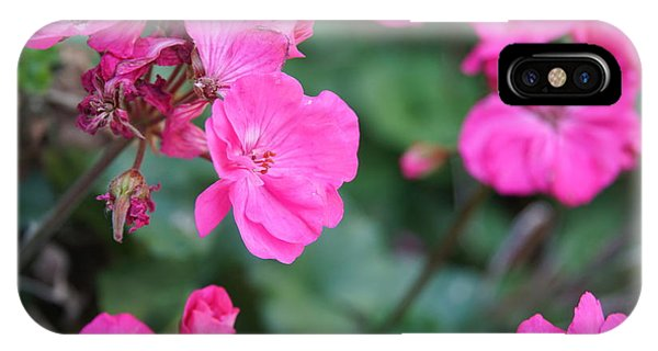 Geraniums IPhone Case