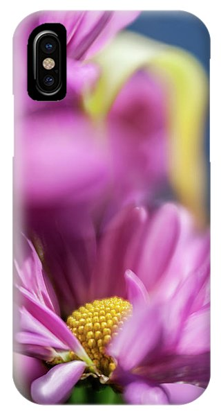 Gerber Daisy In Purple IPhone Case