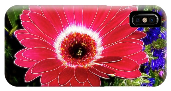 Gerbera Bella IPhone Case