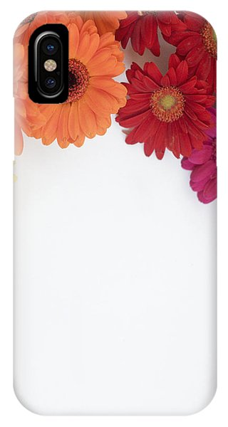 Gerbera Blooms Framed IPhone Case