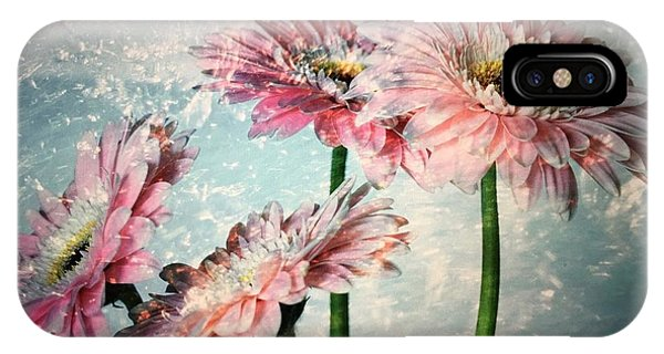 Gerbera Daisies With A Splash IPhone Case