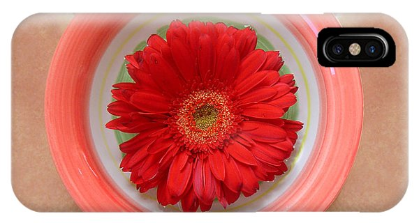 Gerbera Daisy - Bowled On Tile Phone Case by Lucyna A M Green